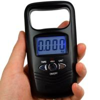 China Portable Dual Accuracy Fishing Hook Digital Electronic Scale Digital Scale Hand-held on sale