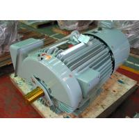 High Performance Inverter Duty Three Phase Electric Motor
