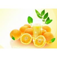 Buy cheap High quality Bergamot Natural Essential oil for massage 100% purity liquid product