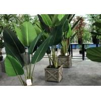 Buy cheap Modern Artificial House Plants Living Room Faux Traveller Tree Plastic Potted product