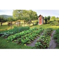 Buy cheap weed barrier under gravel driveway Landscape and Ground Weed Control Fabric product