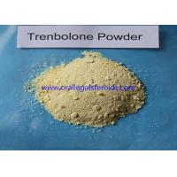 Buy cheap Trenbolone Base Trenbolone Powder / Bodybuilding Injectable Tren Muscle Supplement product