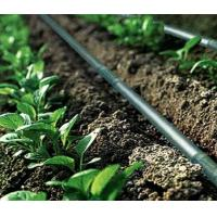 Buy cheap Agriculture Drip Irrigation System Drip Tape ISO9001 factory product