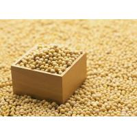 Buy cheap Organic Soybean Extract Powder 40% Isoflavones to improve brain function and dementia from wholesalers