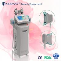 Quality Hot New Cryolipolysis Lipo Slimming Fat Freezing Machine for sale