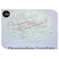 Buy cheap White Masteron Steroid Drostanolone Enanthate / Masterone For Bodybuilding CAS from wholesalers