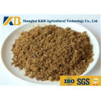 Buy cheap GMP Pure Natural Fish Meal Powder / Animal Feed Additives 65% Protein Content product