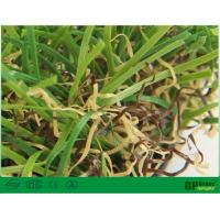 Buy cheap Nature Garden Artificial Grass 35mm Uv Resistant with High Color Fastness product