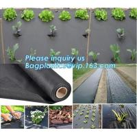 China best quality agricultural weed barrie,UV stable Polypropylene woven fabric weed barrier,maintenance free anti weed mat, on sale
