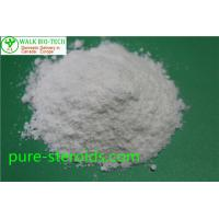 China CAS 431579 – 34 – 9 SARMs Steroids YK11 White Raw Powders Muscle Building Steroids wholesale