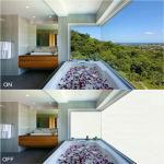 Buy cheap smart film glass top1 manufacturer EBGLASS product