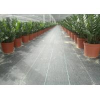 Buy cheap Black Color Geosynthetic Fabric PP 130g 1m Width Weed Barrier For Anti Grass product