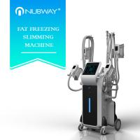 Buy cheap 4 handles Cryolipolysis body slimming fat reduction machine with four handles working together from wholesalers
