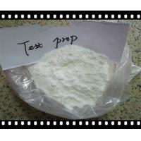 Buy cheap Pharmaceutical GMP Grade Testosterone Phenylpropionate CAS 1255-49-8 product