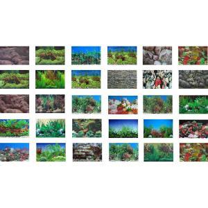 écran de fond d'aquarium