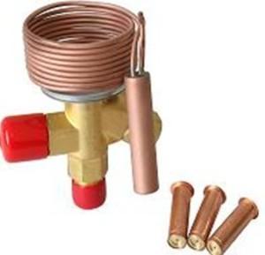 China Exchangable met en cage la valve d'expansion (R404A/507) wholesale