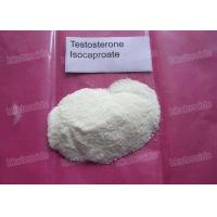 Raw Testosterone Steroid Hormones Powder 15262-86-9 Testostero Testosterone Isocaproate
