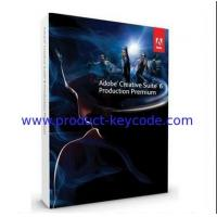 OEM Adobe Flash Professional CS6 Student and Teacher Edition