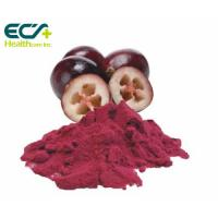 Buy cheap Red Cranberry Fruit Powder , Natural Food Supplement Powder Prevent Cancer product