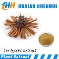 Buy cheap Anti-bacteria anti-cancer Organic herb Cordyceps Sinensis Extract P.E. /polysaccharide/Cordyceptic Acid product
