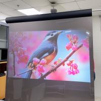 Buy cheap Holographic Projection Screen Film  , Rear Projection Film For Glass For Window Store product