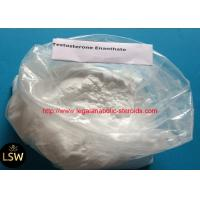 White Cutting Cycle Steroids Powder CAS 315-37-7 Testosterone Enanthate For Fast Muscle