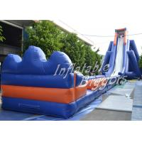 Buy cheap Garden Residential Hippo Inflatable Water Slide Rental With Durable Vinyl product