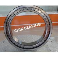China Double Row Full Complement Cylindrical Roller Thrust Bearing high load capacity wholesale