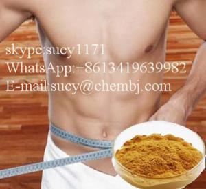 Buy cheap 減量のはす葉のエキスのskypeの高い純度を供給して下さい:sucy1171 product