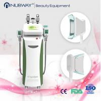 China Eco-friendly design cryolipolysis slimming machine for unwanted fat loss on sale