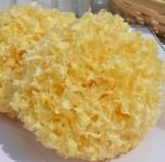 Buy cheap Tremella fuciformis,white fungus, snow fungus ,silver mushroom product