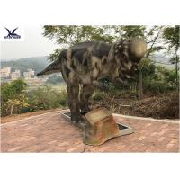 Buy cheap Pachycephalosaur Robotic Dinosaur Garden Statue Soft And Smooth Surface Treatment product