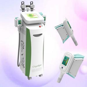 China new product cryolipolysis / cryolipolysis freeze fat /beauty salon equipment cryolipolysis on sale