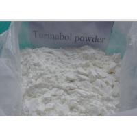 Buy cheap Raw Muscle Growth Hormone Powder Turinabol Clostebol Acetate CAS855-19-6 from wholesalers