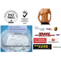 China 62-90-8 Nandrolone Steroid / Nandrolone Phenylpropionate for Bodybuilding wholesale