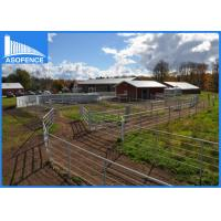 Buy cheap Galvanized Pipe Wire Cattle Panels , Temporary Horse Fence For All Livestock product