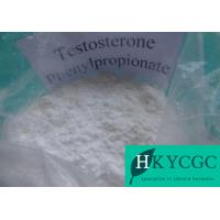 China Steroid Compound Testosterone Phenylproprionate Muscle Building Steroids Test PP Test Phenylpropionate wholesale