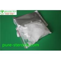 China Muscle Growth Steroid , Pure Testosterone Steroid Testosterone Base Raw Powder CAS 58 - 22 - 0 wholesale