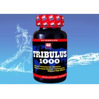 Buy cheap Tribulus 1000 --- Tribulus Terrestris Capsule for Natural Testosterone , Sports Nutrition Supplements for Bodybuilding product