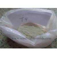 Buy cheap Weight Loss Steroids T4 L-Thyroxine Sodium Salt For Muscle Growth product