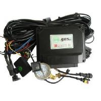 China CNG/LPG Conversion Kits for Multipoint Injection System (EG200) on sale