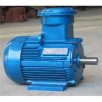 Yb2 Explosion Proof Series Motor 99378811