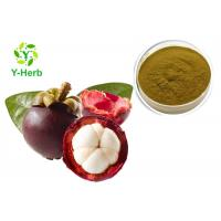 China Natural Xanthones 10%-90% Anti Aging Peel Powder Alpha Mangostin Mangosteen Extract on sale