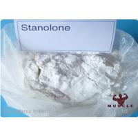 Synthetic Anabolic Steroid Powder , Androstanolone Powder For Muscle Buliding CAS 521-18-6