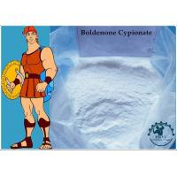 Buy cheap 99% Body-building Muscle Growth Boldenone Cypionate CAS:106505-90-2 White Powder product