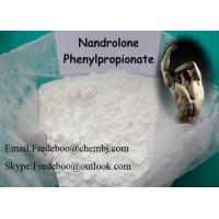 Buy cheap Bodybuilding Raw Testosterone Powder Nandrolone Phenylpropionate Steroids product
