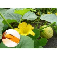Buy cheap Pumpkin Seed Oil Prevent Prostate Natural Dietary Supplements Food Grade product