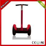 2つの車輪の電気スクーターを立てるEsway ES1402の自己のバランスは中国でsegway作ります