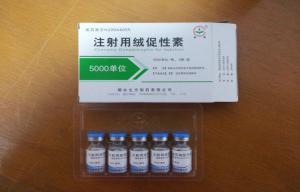 Human Chorionic Gonadotropin Hormone HCG Supplement Improve Exercise Tolerance