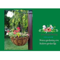 China Black Hanging Flower Baskets , Planted Hanging Baskets With Coco Liner on sale